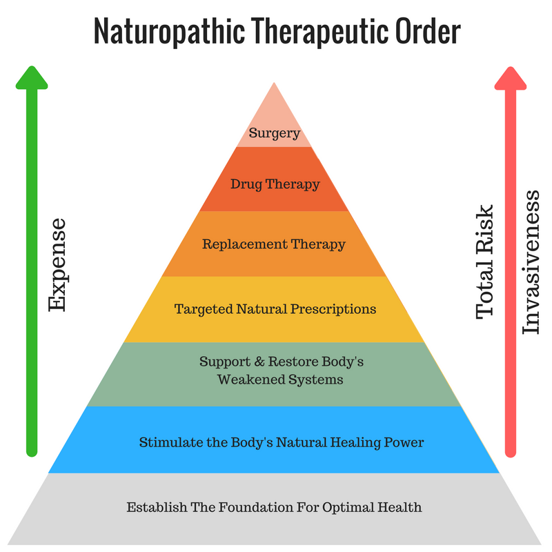 Naturopathic Therapeutic Order.png