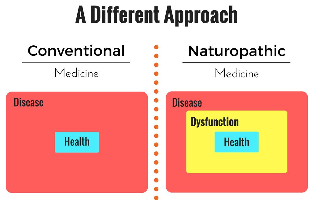 Dysfunction   is the stage between health and disease. Individuals in this stage will   experience some symptoms (fatigue, gas and bloating, etc.) but their medical doctor   may not find anything wrong with them. Naturopathic doctors are uniquely qualified to   treat dysfunction. We get to the root of the problem and help you feel better. Keep going down to read more about   My Approach.