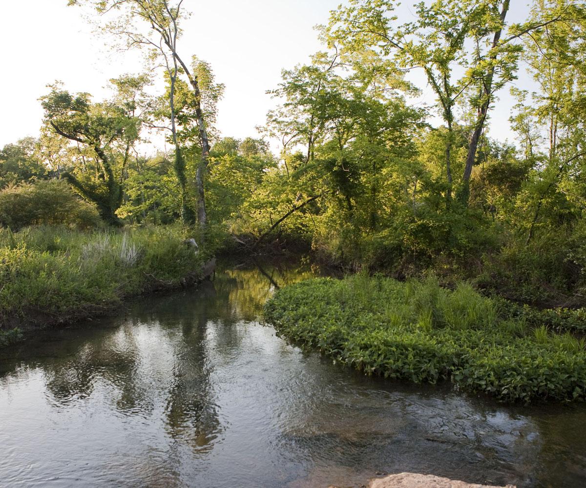 Creek_05_10.jpg