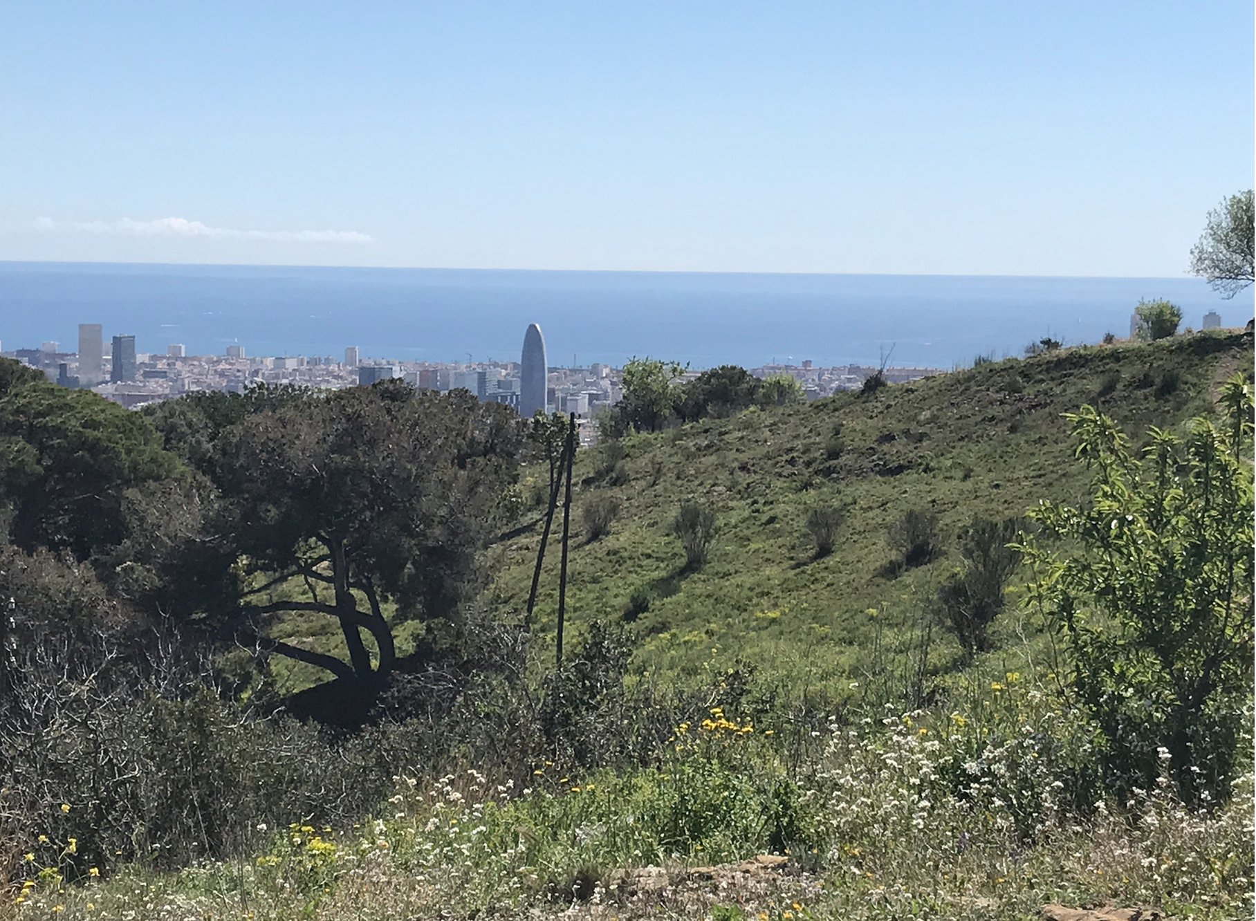 Beautiful view from Parc Guell, over looking the city of Barcelona