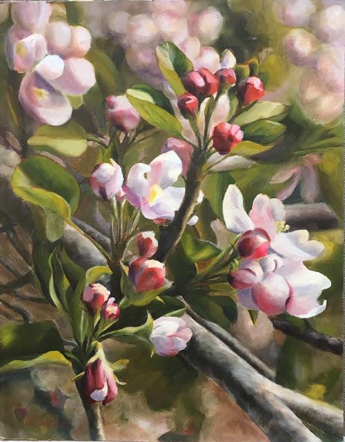 Spring in Julian   11x14 -  oil on panel