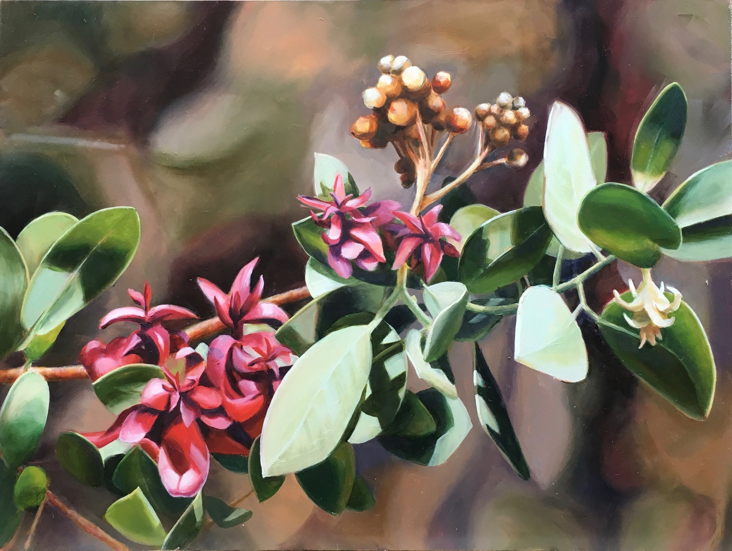 High Summer Manzanita  - 12x16 - Oil on panel