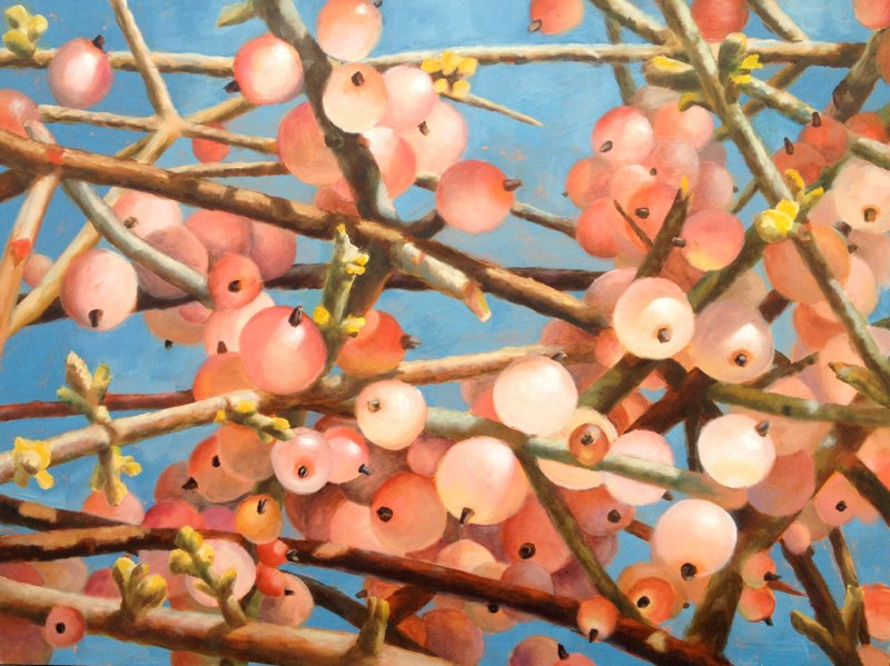 Pink Berries  - 12x16 - Oil on panel - SOLD