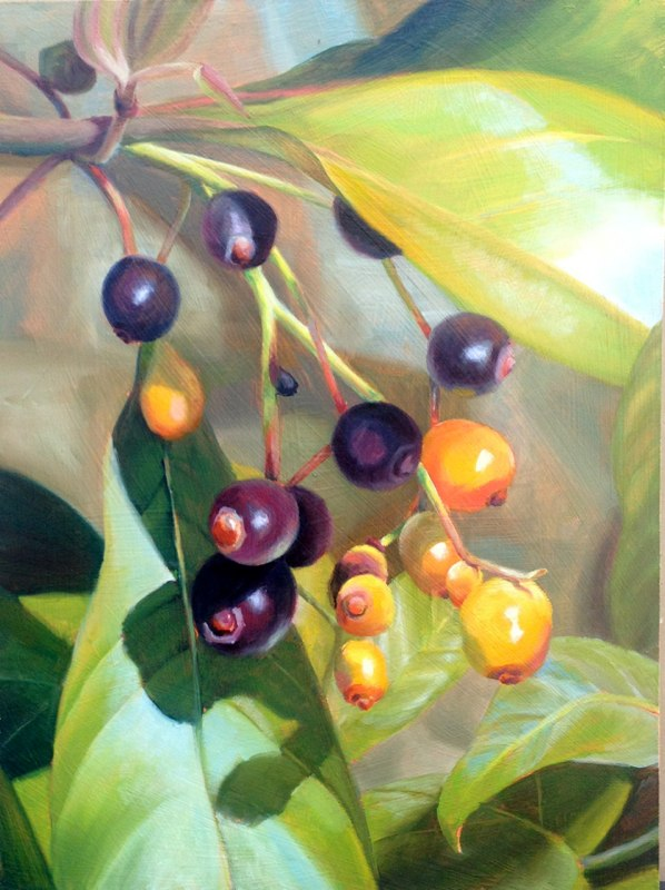 Ripening Berries  - 12x16 - Oil on panel - SOLD