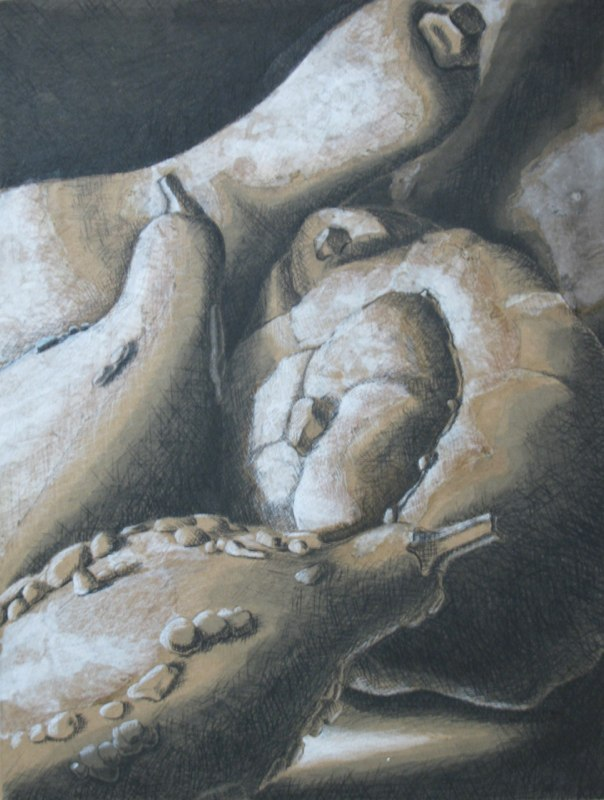 Gourds - 10x12 - charcoal and chalk on paper