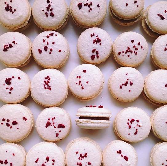 Society Fair Macarons.png
