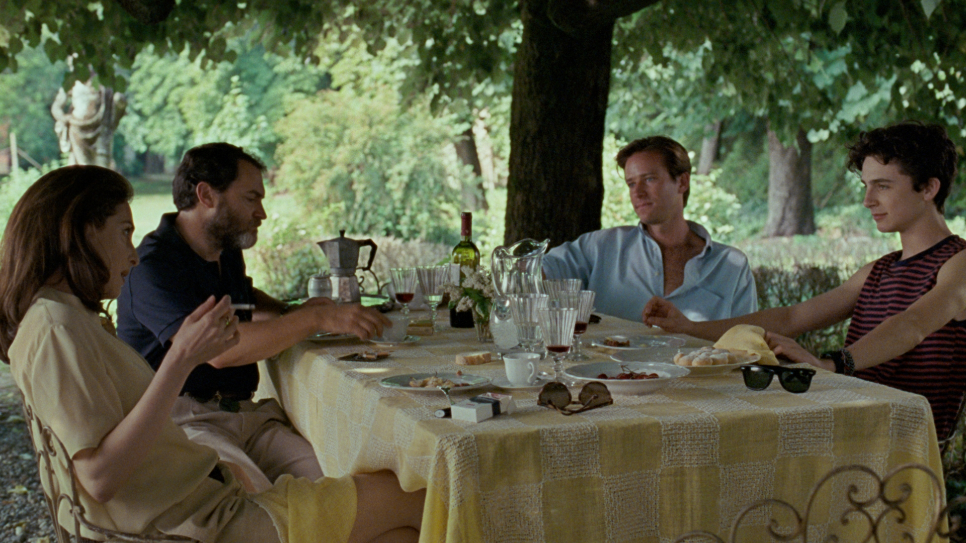 call me by your name, timothee chalamet luca guadagnino, armie hammer, michael stuhlbarg,