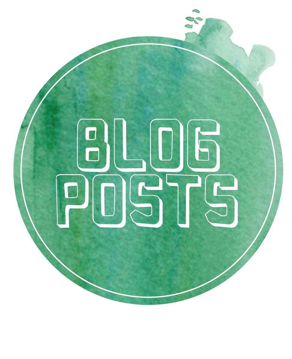 BLOG PACKAGES
