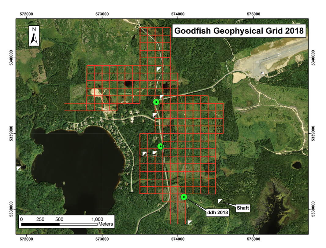 Geophysical grid on Goodfish Patents and diamond drill locations.png