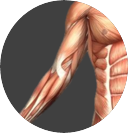 Elbow Image.png