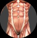 Lumbar Spine Image.png