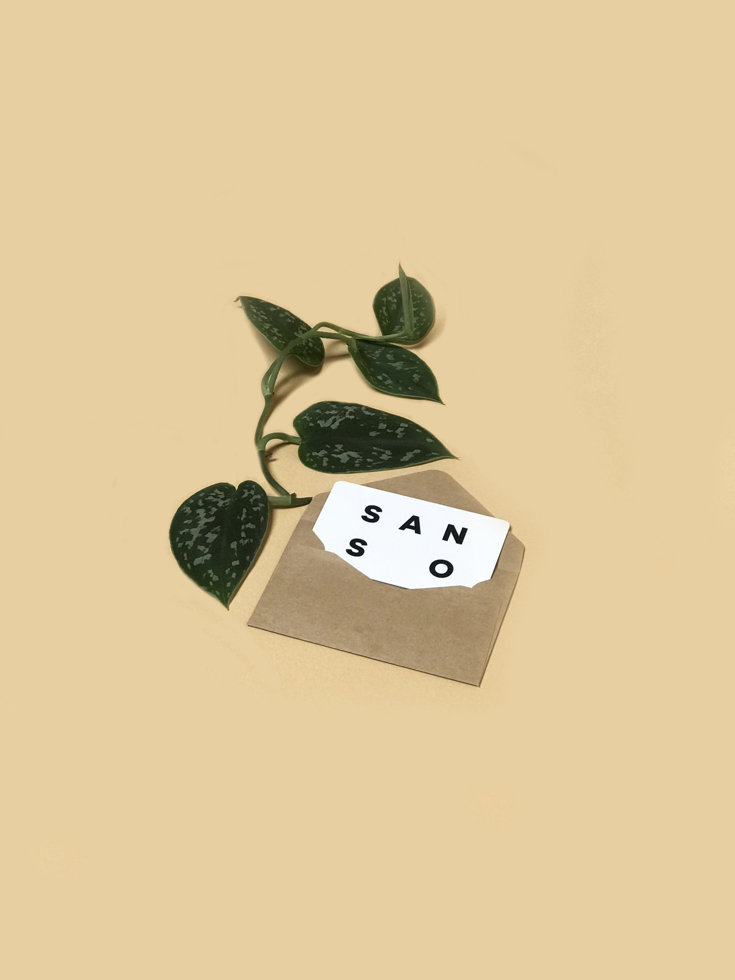 the sanso gift card - For all your gifting needs.