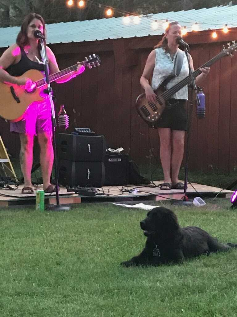 Juno's first house concert!  She did a wonderful job chilling and taking in the tunes! Good doggie!