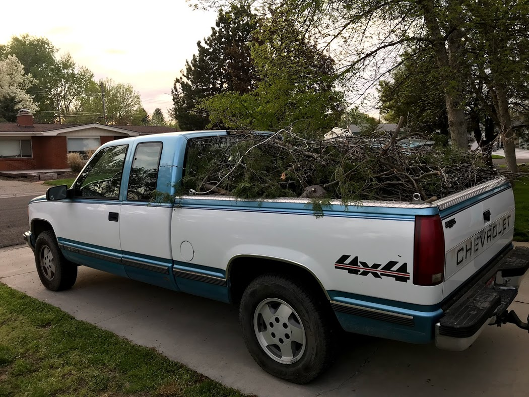 Three truck loads of scratchy branches we took to recycling!