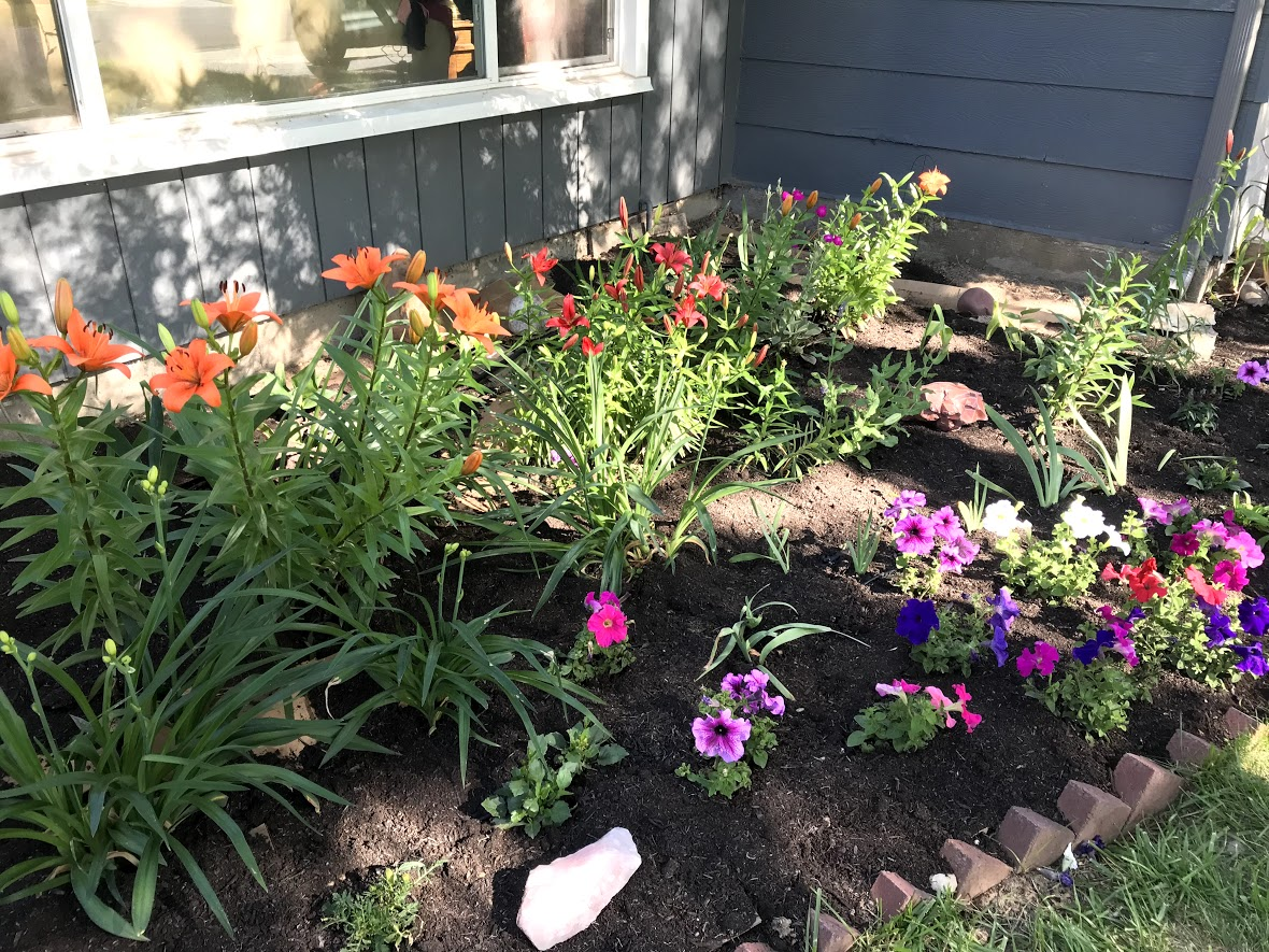 Flower garden finally complete.