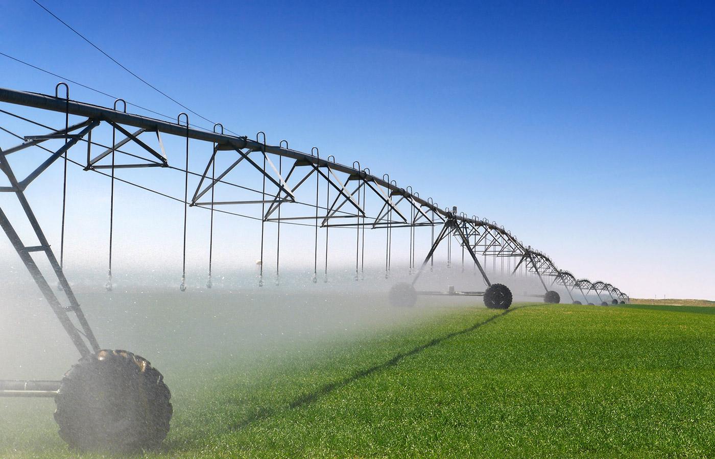 Amuri Irrigation Scheme