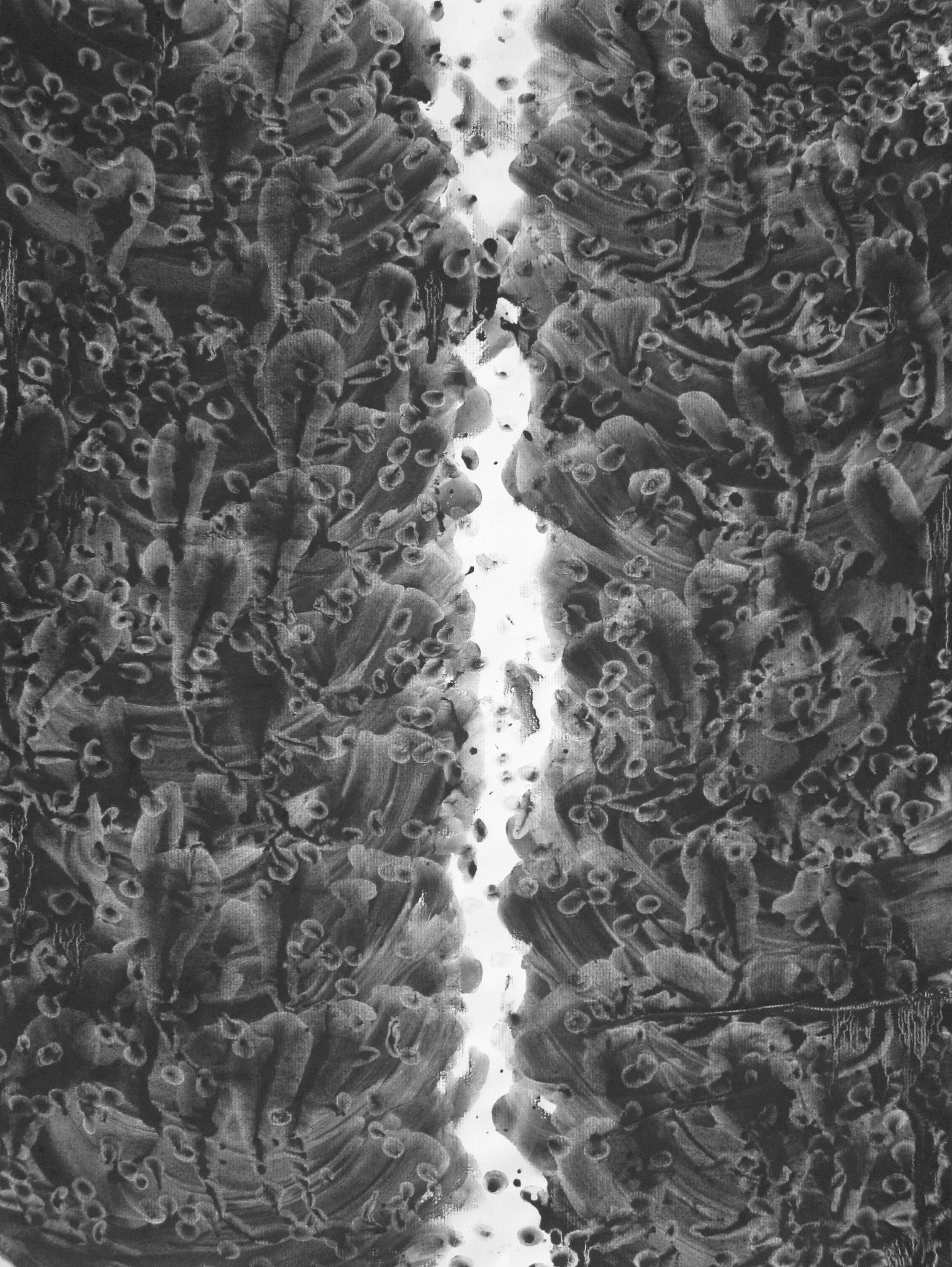 Rift  , 2014, Charcoal on paper, 24 x 18 in.