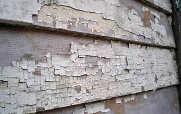 Lead paint flaking off a wooden wall.jpg