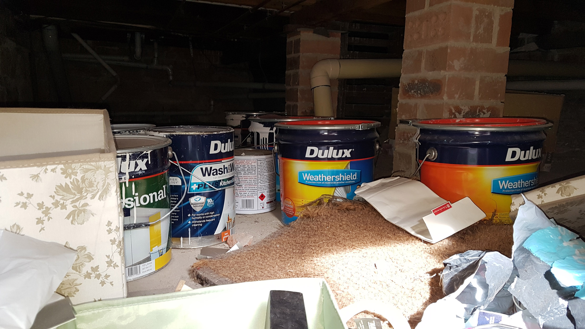 Paints are often found during the inspection process.