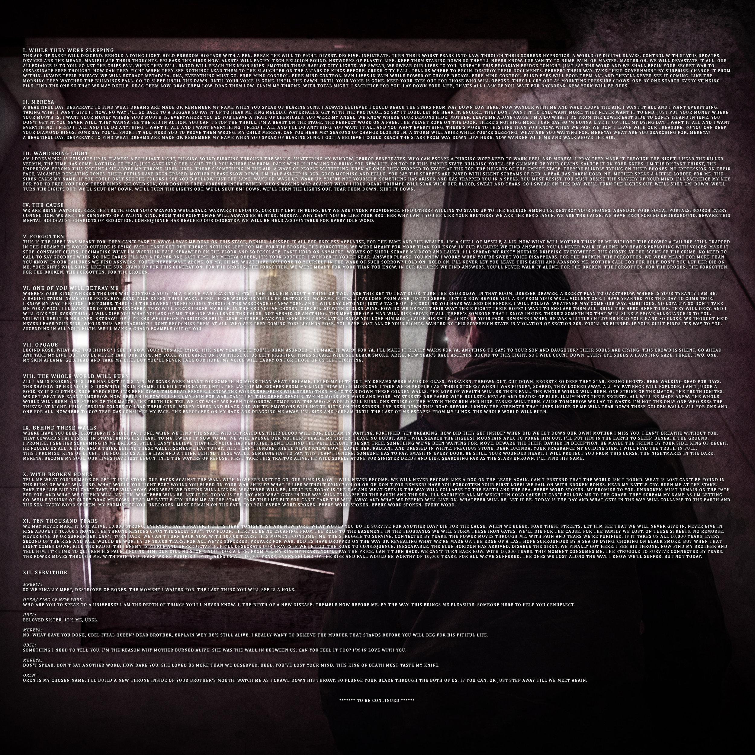 Lyrics Insert [Vinyl]