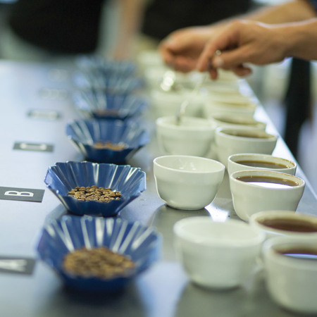 PUBLIC CUPPING EVENT -