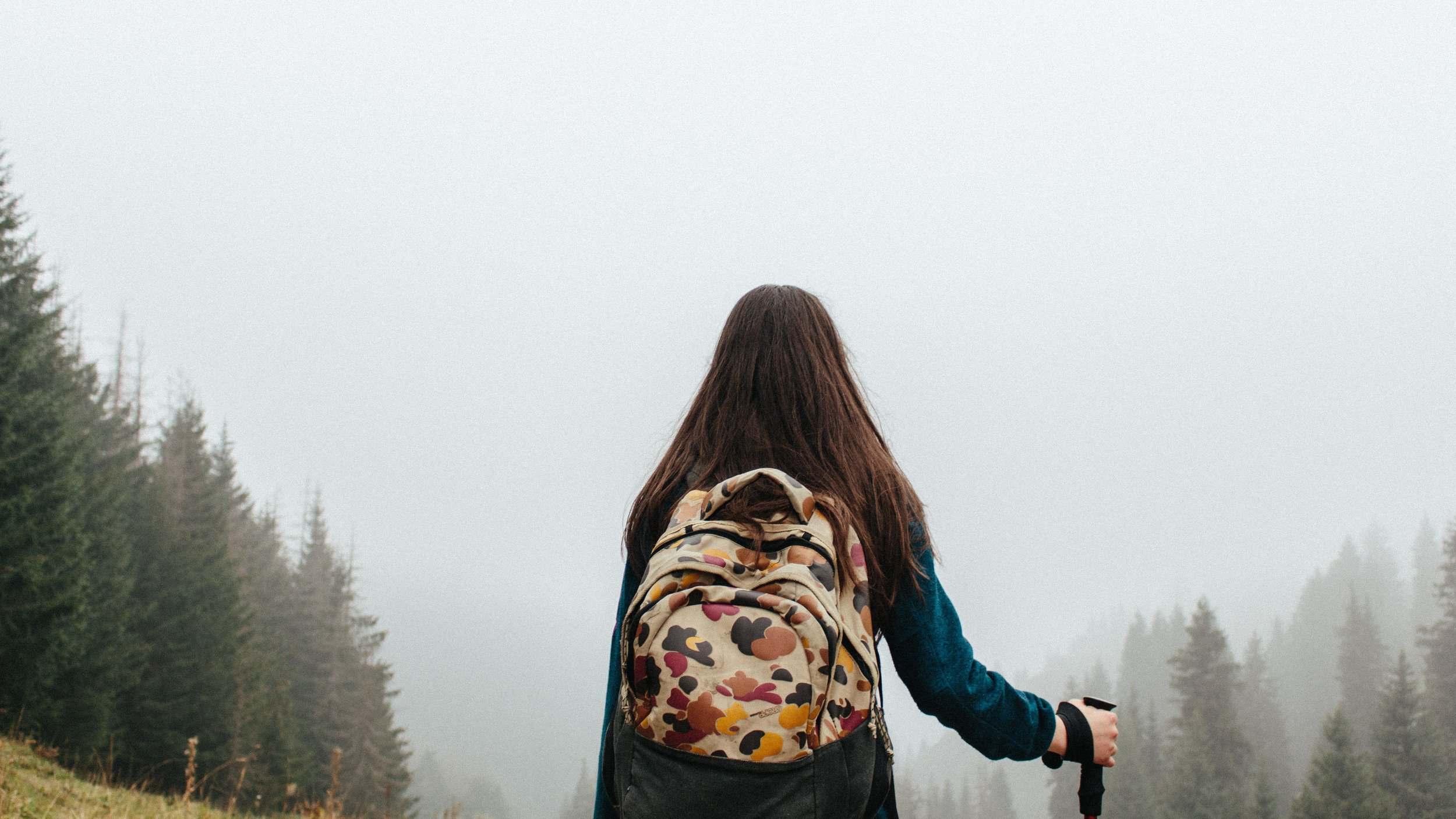 back-view-backpack-blur-304648.jpg