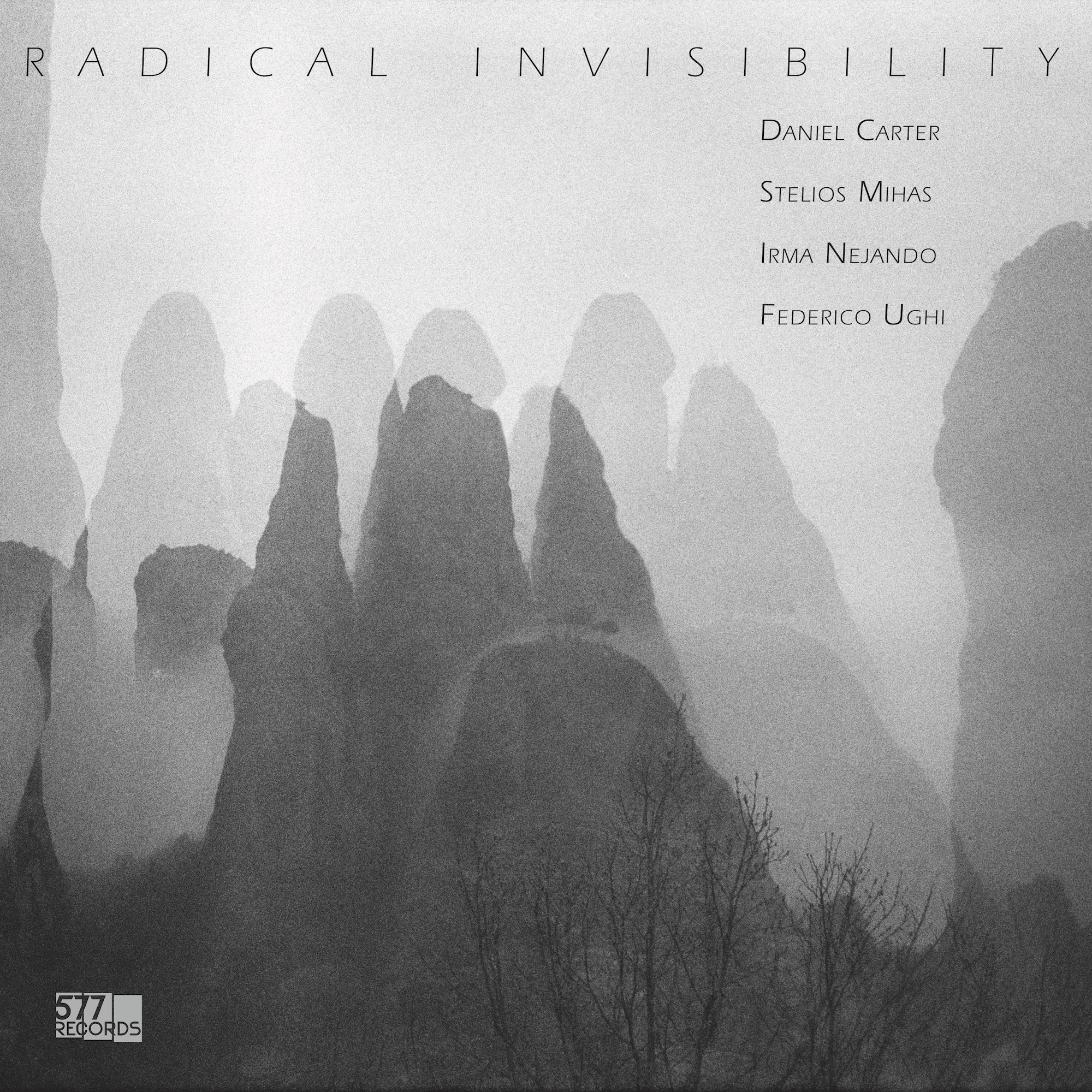 5806 RADICAL INVISIBILITY cover.jpg