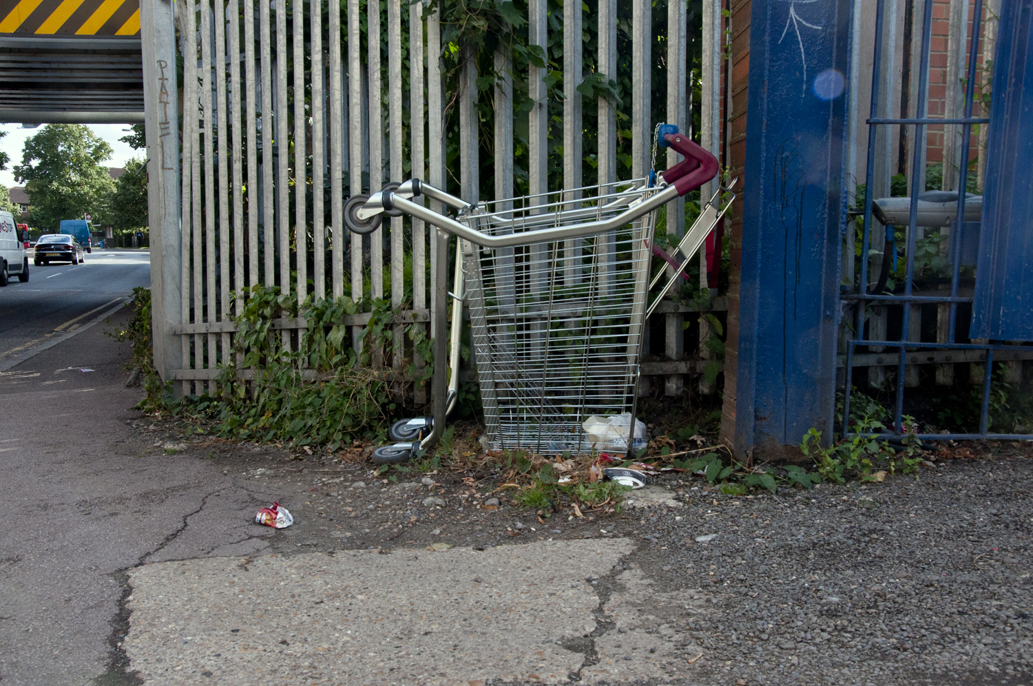 2014-Discarded-Shopping-Cart_01.jpg