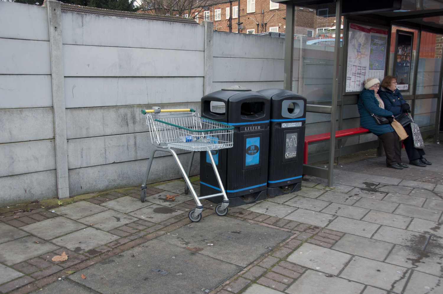2014-Discarded-Shopping-Cart_04.jpg
