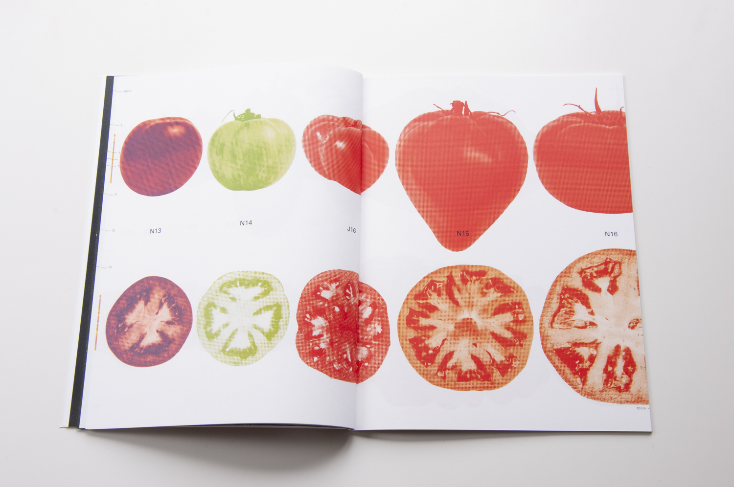2018_Our-Food-1-Tomato_10.jpg