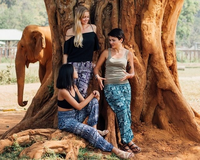 Elephant pants - Image © One Tribe Apparel