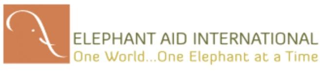 EAI+logo.jpg