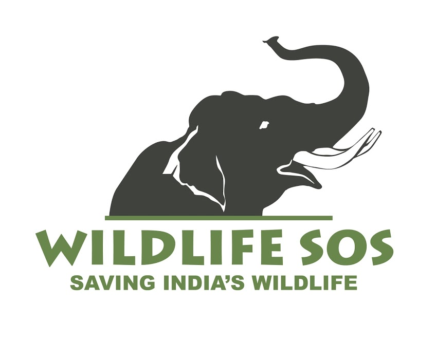 Wildlife SOS elephant logo