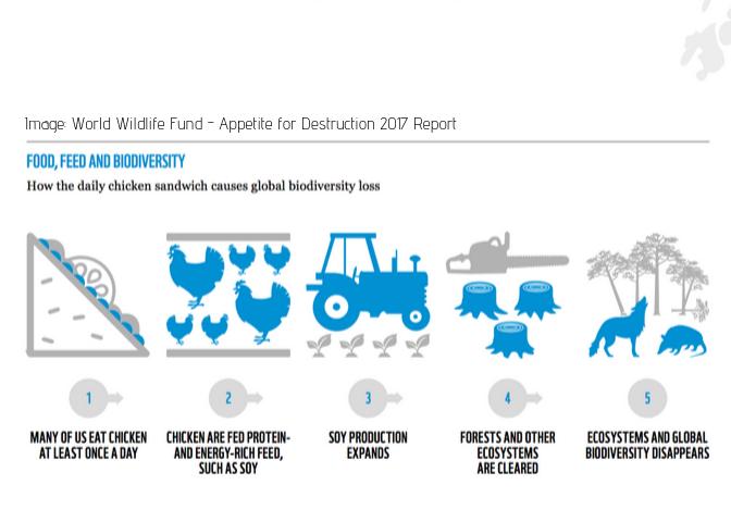 Image_ World Wildlife Fund - Appetite for Destruction 2017 Report.png