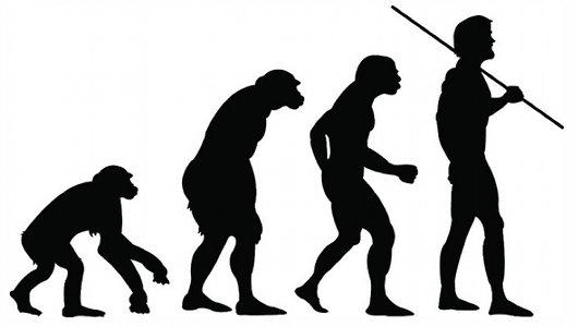 evolution-2.jpg