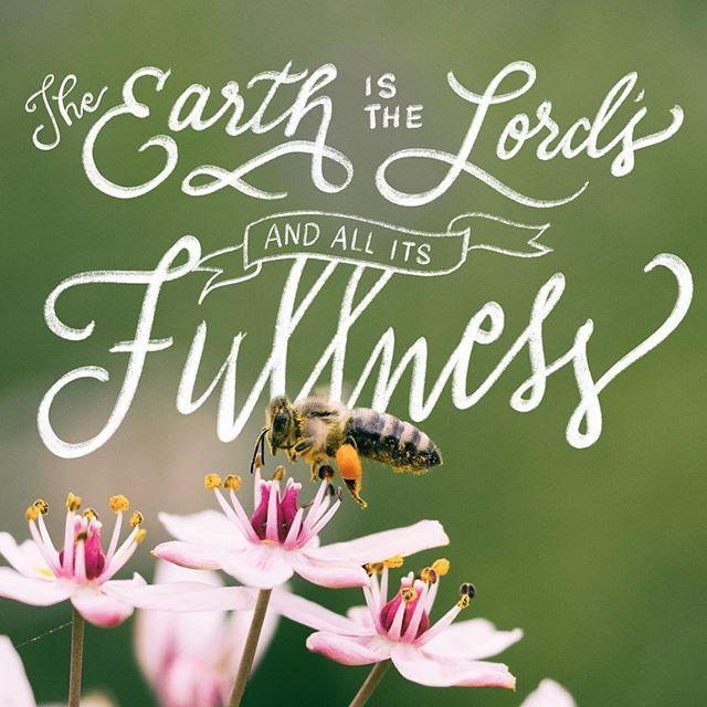 Psalm 24:1 😇🐝🌸