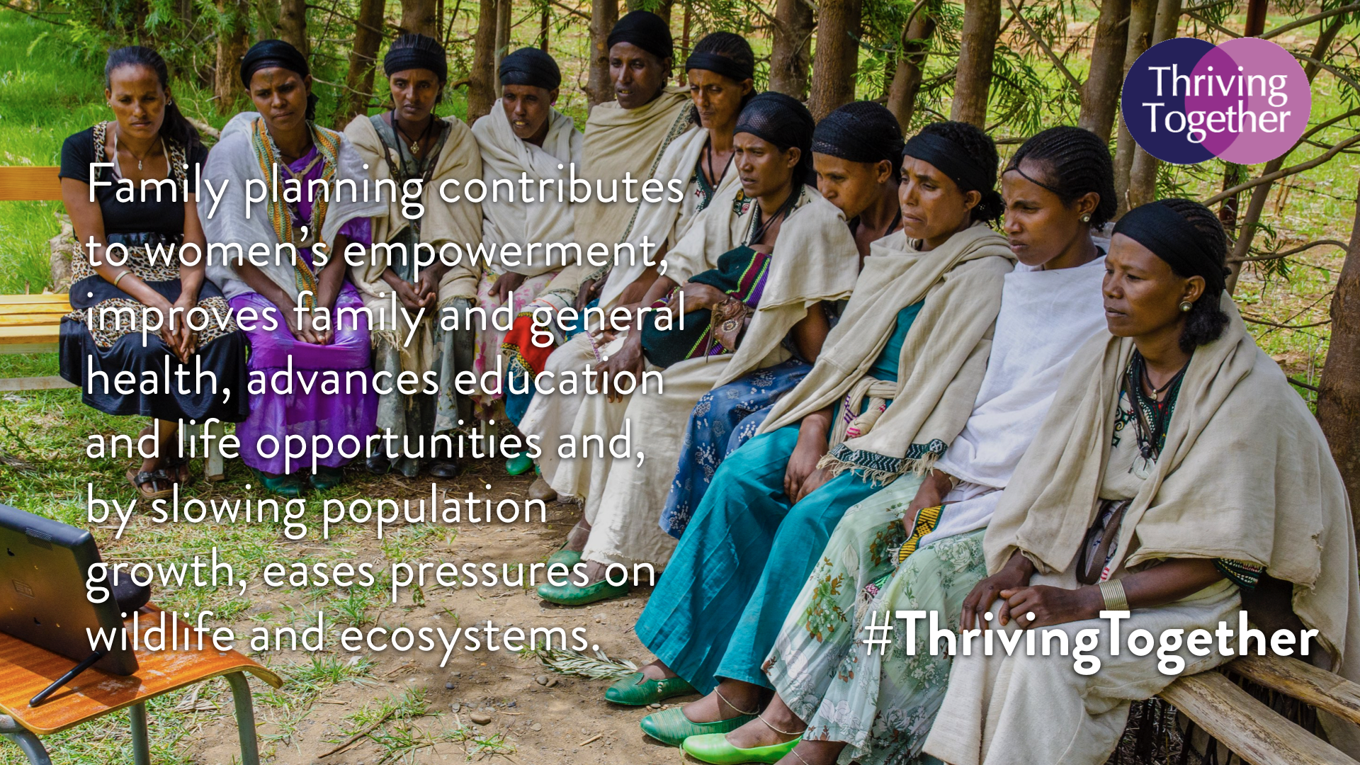Campaign image 4 #ThrivingTogether..png