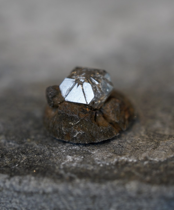ashes-to-diamonds-growth-cell-raw-diamond.png