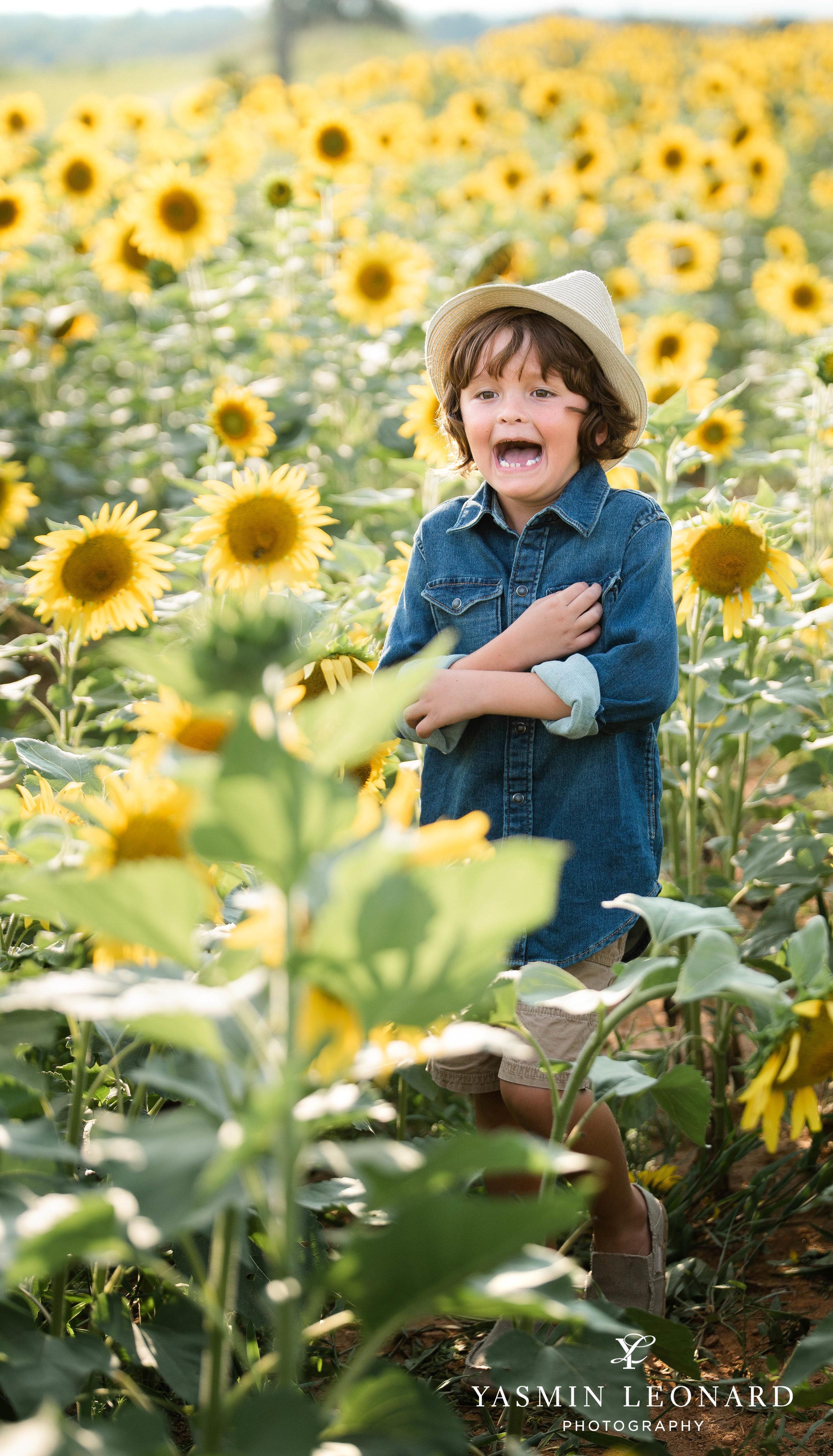 Sunflower Mini Session - Dogwood Farms - Sunflower Field - Boys in Sunflower Field - What to wear sunflower field - Yasmin Leonard Photography-2.jpg