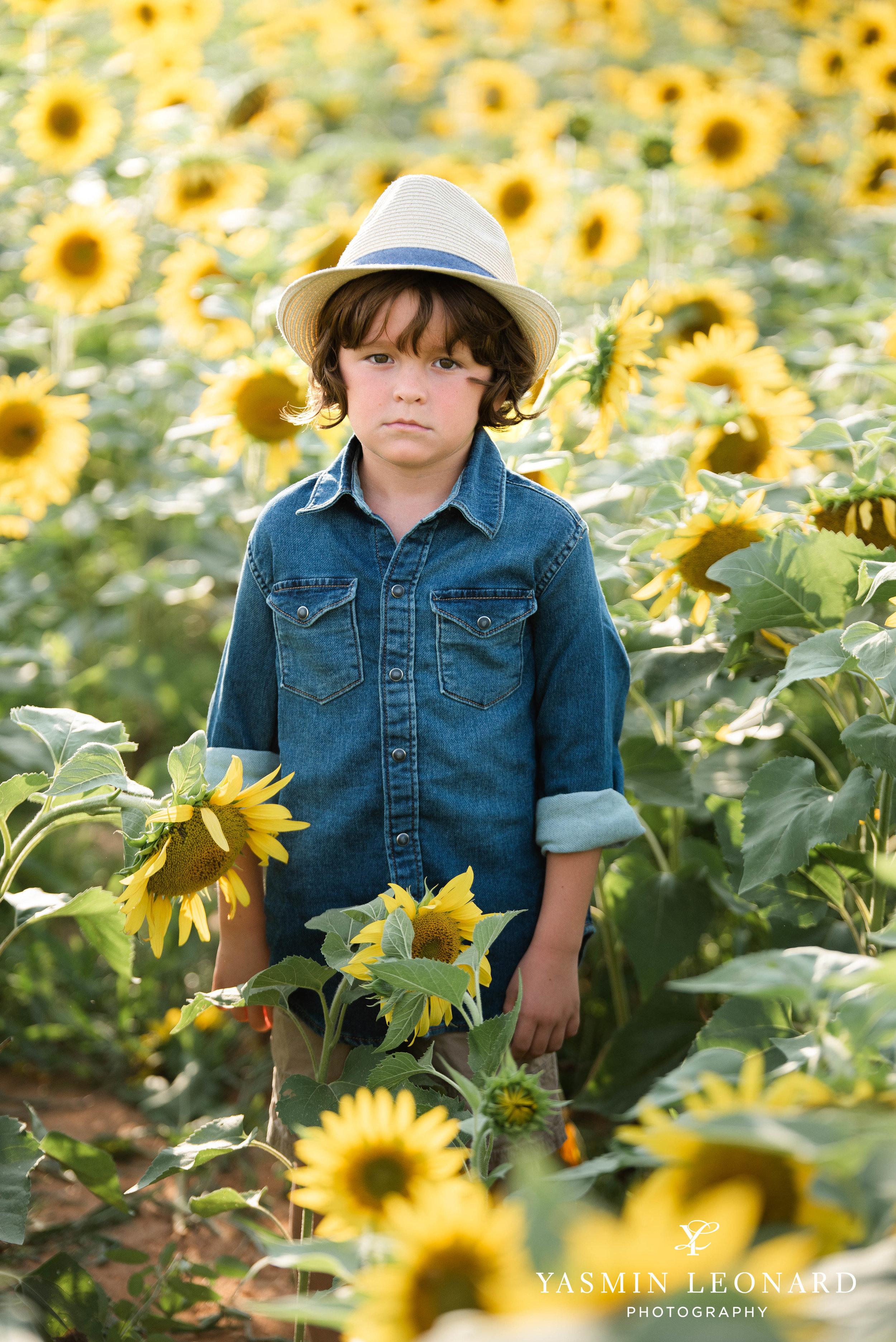 Sunflower Mini Session - Dogwood Farms - Sunflower Field - Boys in Sunflower Field - What to wear sunflower field - Yasmin Leonard Photography-1.jpg
