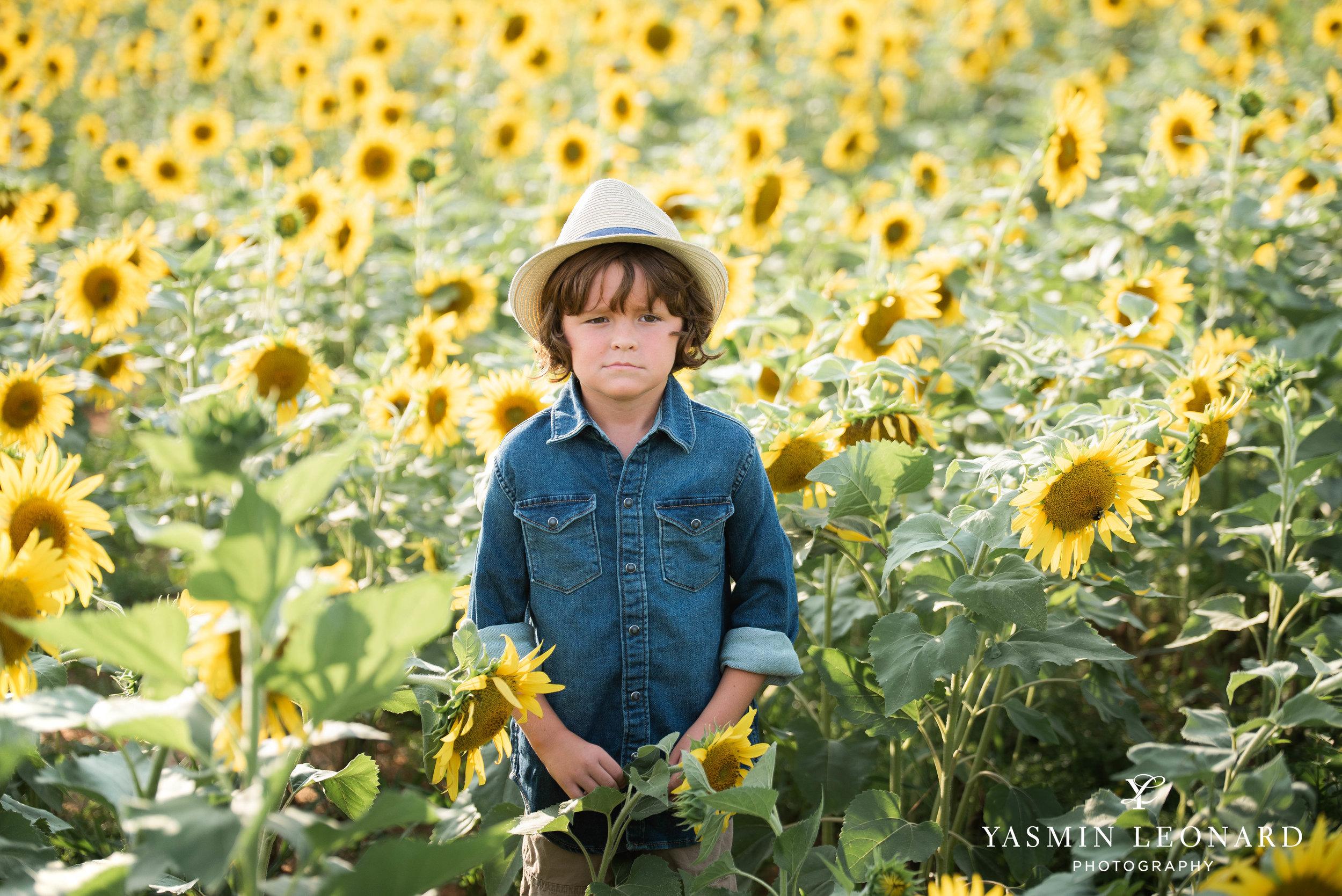 Sunflower Mini Session - Dogwood Farms - Sunflower Field - Boys in Sunflower Field - What to wear sunflower field - Yasmin Leonard Photography-3.jpg