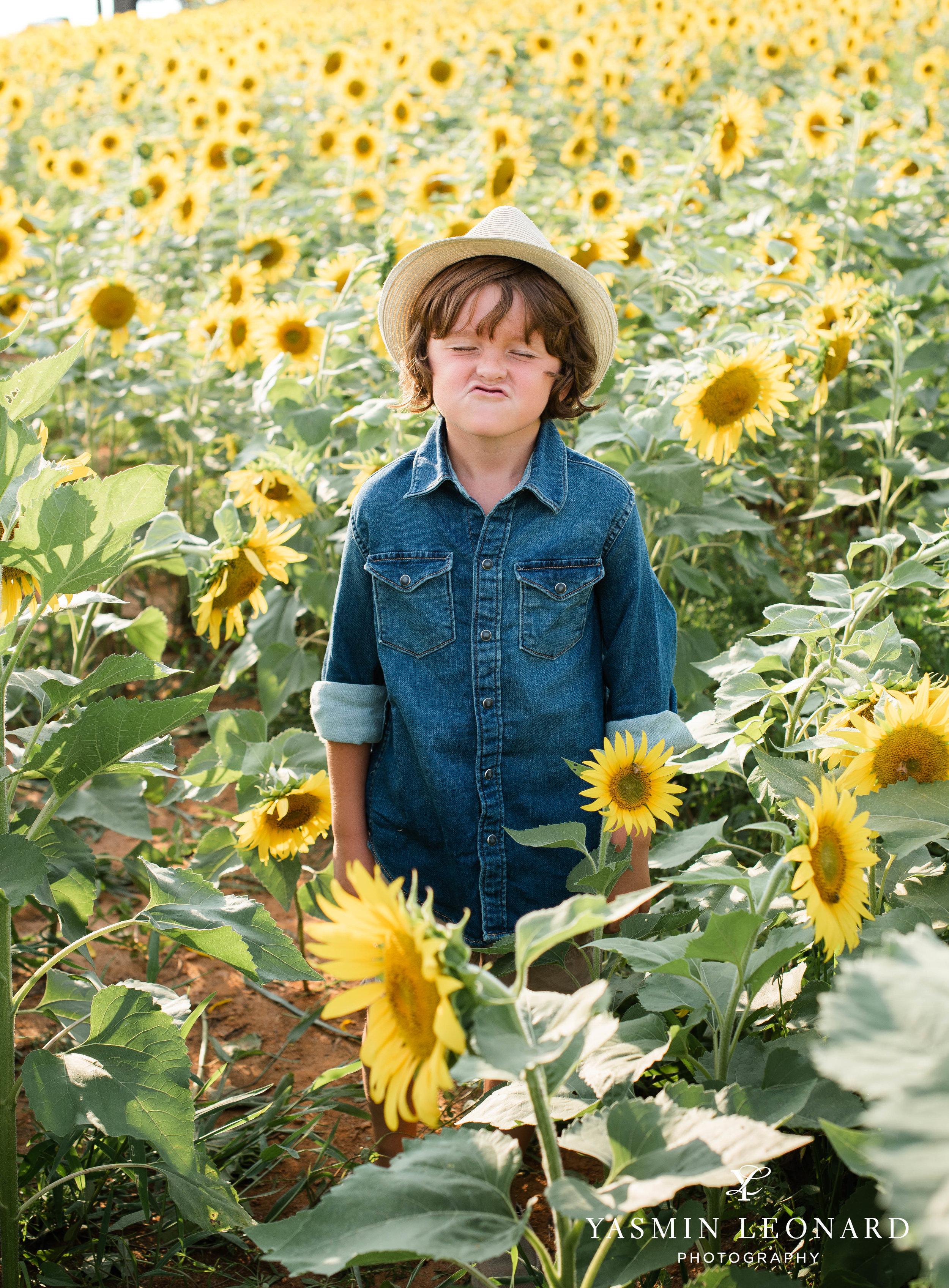 Sunflower Mini Session - Dogwood Farms - Sunflower Field - Boys in Sunflower Field - What to wear sunflower field - Yasmin Leonard Photography-4.jpg