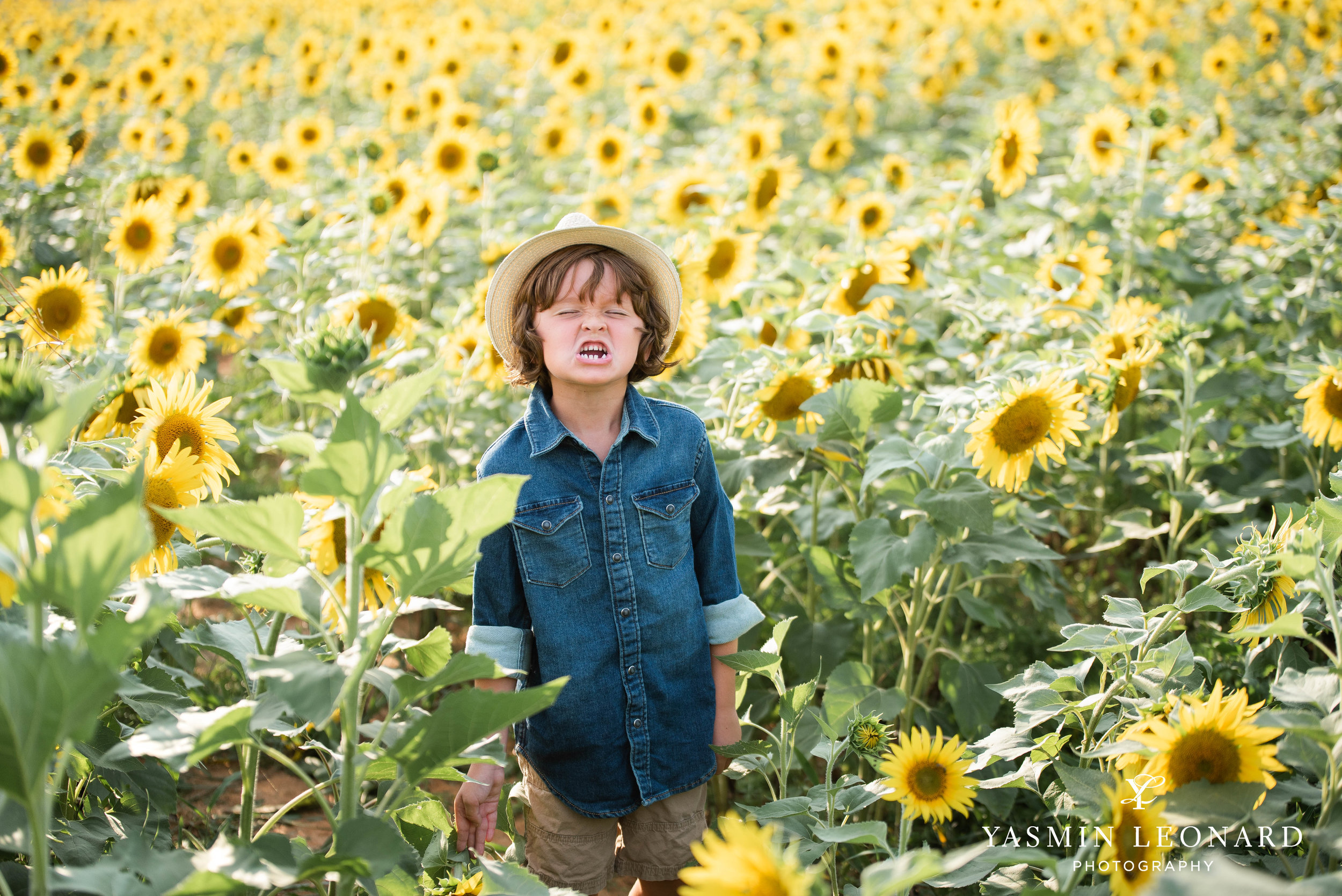 Sunflower Mini Session - Dogwood Farms - Sunflower Field - Boys in Sunflower Field - What to wear sunflower field - Yasmin Leonard Photography-5.jpg