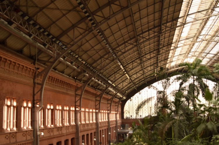 THE ATOCHA TRAIN STATION IS WELL WORTH A VISIT EVEN IF YOU DON'T NEED TO CATCH A TRAIN