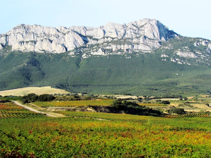 It is worth visiting Laguardia for the views of the Rioja valley
