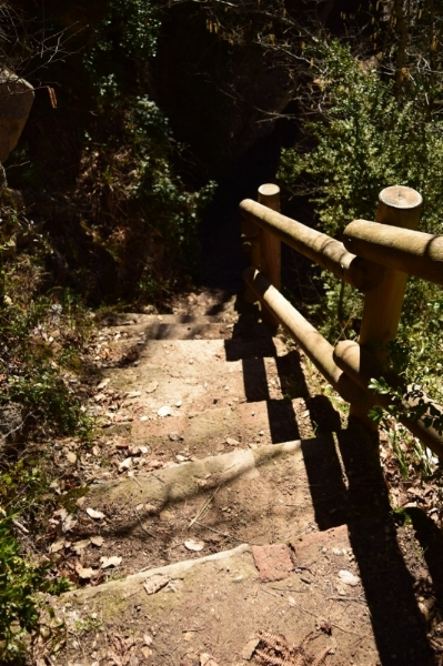 The stairways break up the trail to make it more interesting.