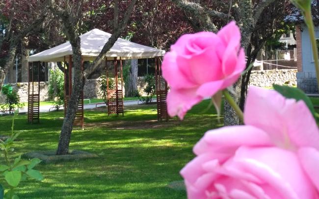 The grounds at La Casona.