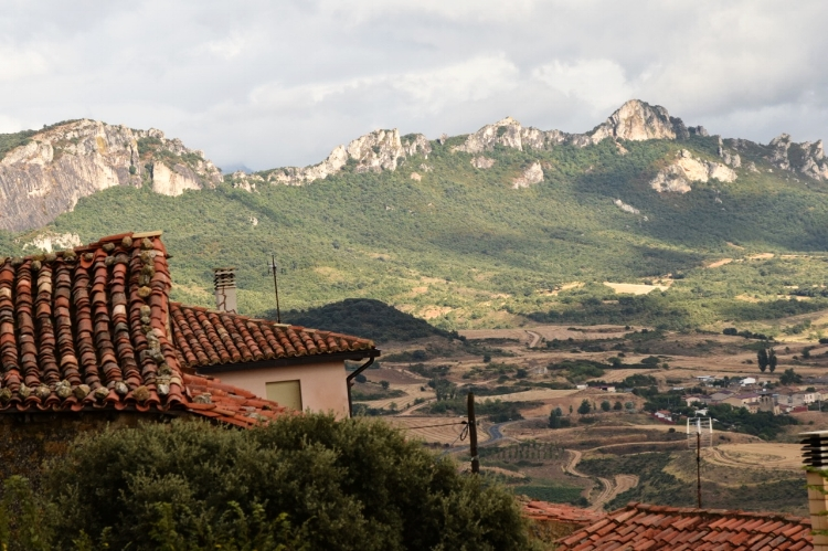 Take in the vistas of the rioja valley