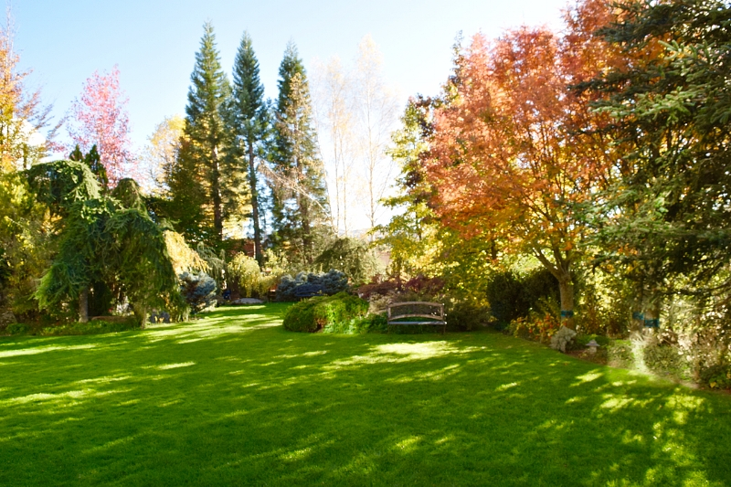 The Gardens at El Milano Real are green and have something blooming almost all year