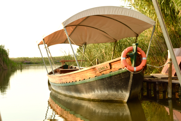 A sunset boat trip on the Albufera nature reserve was a highlight to my recent visit to Valencia.